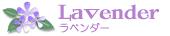 lavWhi_edited-1